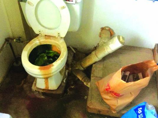 Conditions in the lab's bathroom  where chemicals were reportedly flushed down the toilet into a septic tank.