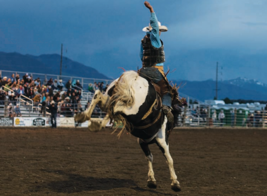 Caleb Meeks from Geraldine ties for second place in the saddle bronc riding competition. PHOTO BY HANNAH KEARSE