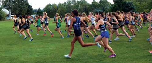 (BELOW) And they're off! The ladies in Mustang green stand out in a sea of runners right off the starting line at the Bridger Creek Golf Course on Saturday.