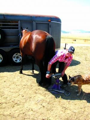 Reeves at work -  filing the hoof flat, with Ace, supervising