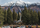 The Lutz spruce from the Chugach National Forest near Seward, Alaska was chosen as the Capitol Christmas Tree in 2015. PHOTO COURTESY OF THE US FOREST SERVICE