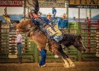 Cooper Clemens holds on during the bareback riding competition at the Ennis Rodeo July 3. PHOTO BY MARK LAROWE